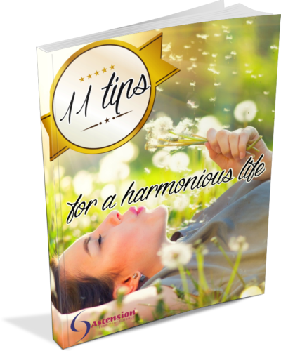 11-tips-for-a-harmonious-life-ebook-standing